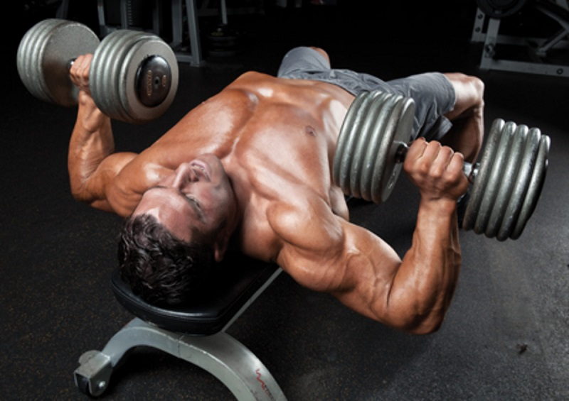 Dumbblle Press | How to build chest muscles  Are You Looking For The Best Chest Workout For Mass dumbbell bench press
